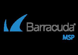 Als Anbieter von Managed Security Services neue Umsatzpotentiale mit Barracuda MSP erschließen