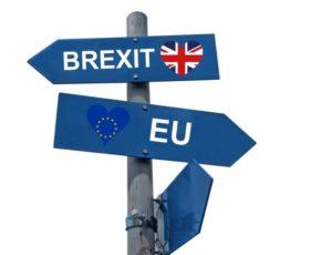 Bereit für den Brexit? Wie ERP- und Financials-Nutzer ihre Software und Stammdaten anpassen