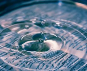 ERP als Know-How-Speicher: Wissensmanagement in Unternehmen